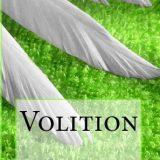 Volition by Shawn Kirsten Maravel