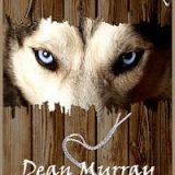 Splintered by Dean Murray