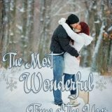 The Most Wonderful Time of the Year by Marie Landry