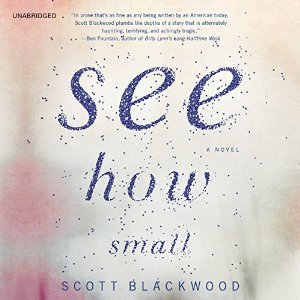 See How Small: A Novel by Scott Blackwood