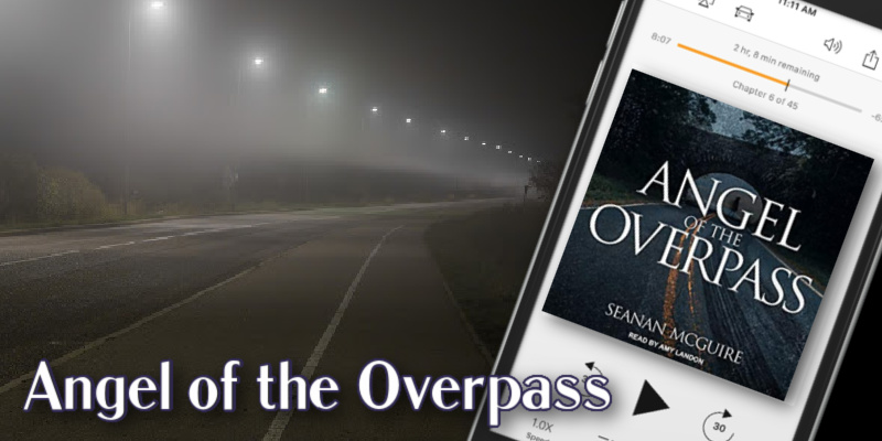 Angel of the Overpass Banner