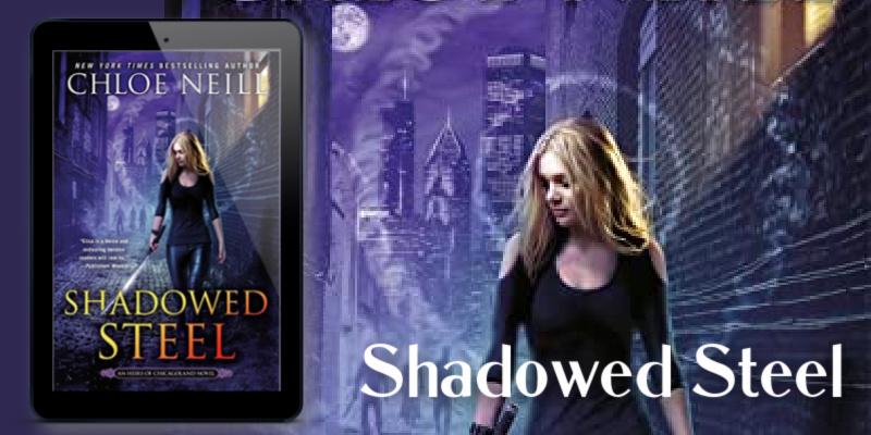Shadowed Steel banner